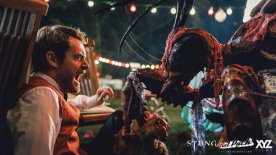 stung-3-600x337