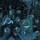 Cool Mashup: Everybody's Singin' In The Rain