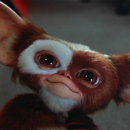 Chris Columbus talks about Gremlins 3