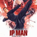 "Review – Ip Man: Kung Fu Master – ""All very exciting on the surface"""