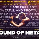 Sound of Metal is heading to UK cinemas