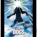 Every issue of Stray Dogs so far is being rushed back to print